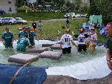 Sieger und Achter im Teich