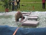 Wette verlorenBM Bachmann geht baden (1. Mal)