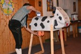 Felix mit Kuh