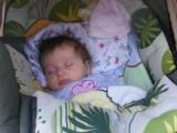 Pauline Lotta: Nichts los hier, zum Einschlafen